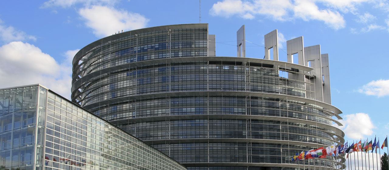 Parlement Européen Strasbourg Entier - Judicia Conseils